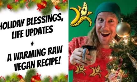 Holiday Blessings, Updates + A Warming Recipe!