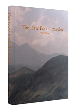 the raw food traveler