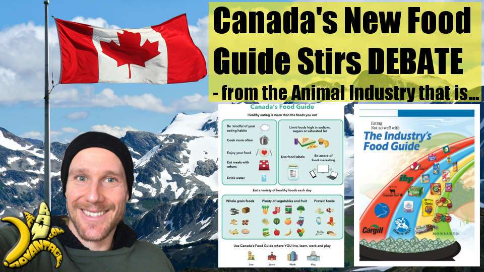 Canada's New 2019 Food Guide is Out and Stirs Debate, from Meat and Dairy Industry…