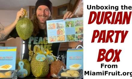 Unboxing the Durian Party Box From MiamiFruit.org!