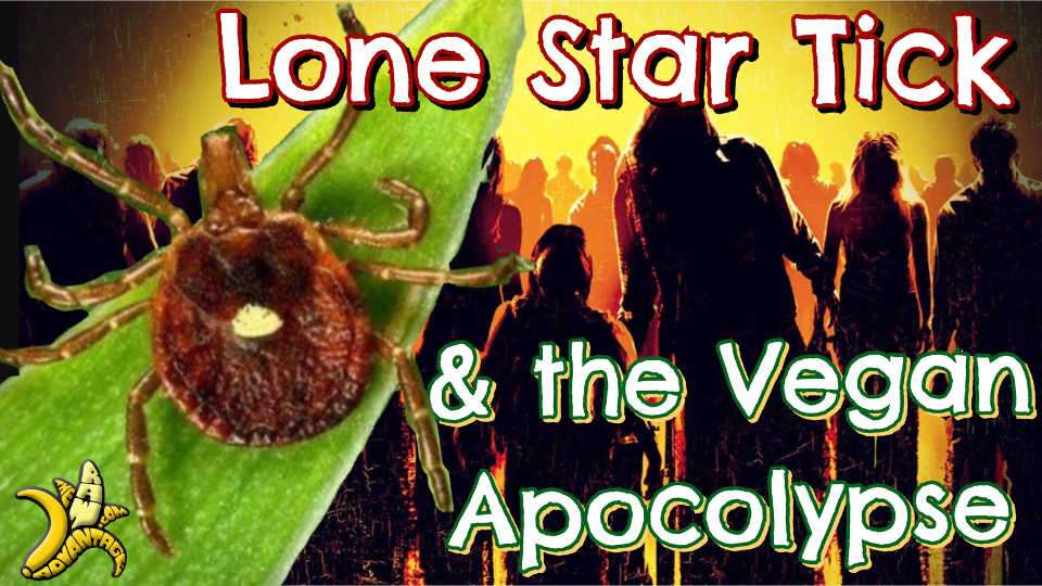 Lone Star Tick | The Vegan Apocalypse