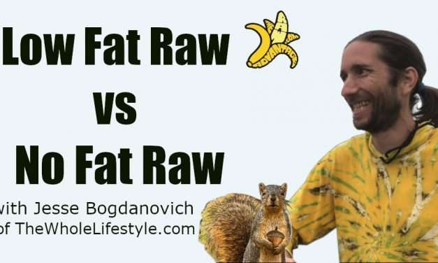 Low Fat Raw vs No Fat Raw with Jesse Bogdanovich of TheWholeLifestyle.com