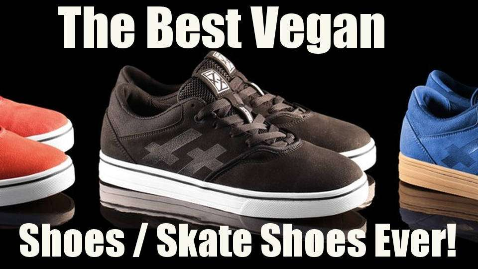 Vegan Shoes review, Best Vegan Skate Shoes, Servant Footwear!