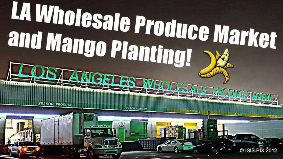 LA Wholesale Produce and Mango Planting