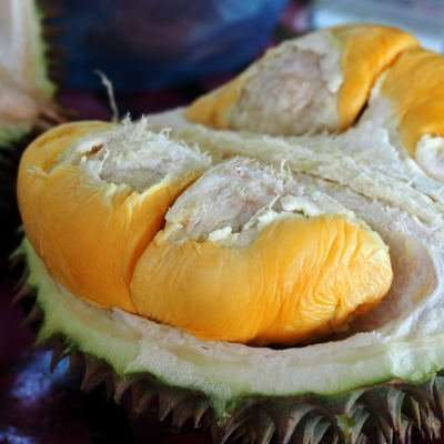 Durian Tourist Guide to Penang | The Raw Advantage