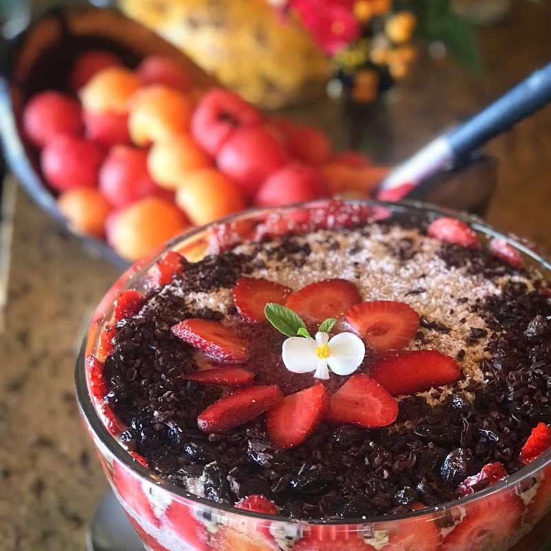 raw fruit pudding chris kendall the raw advantage